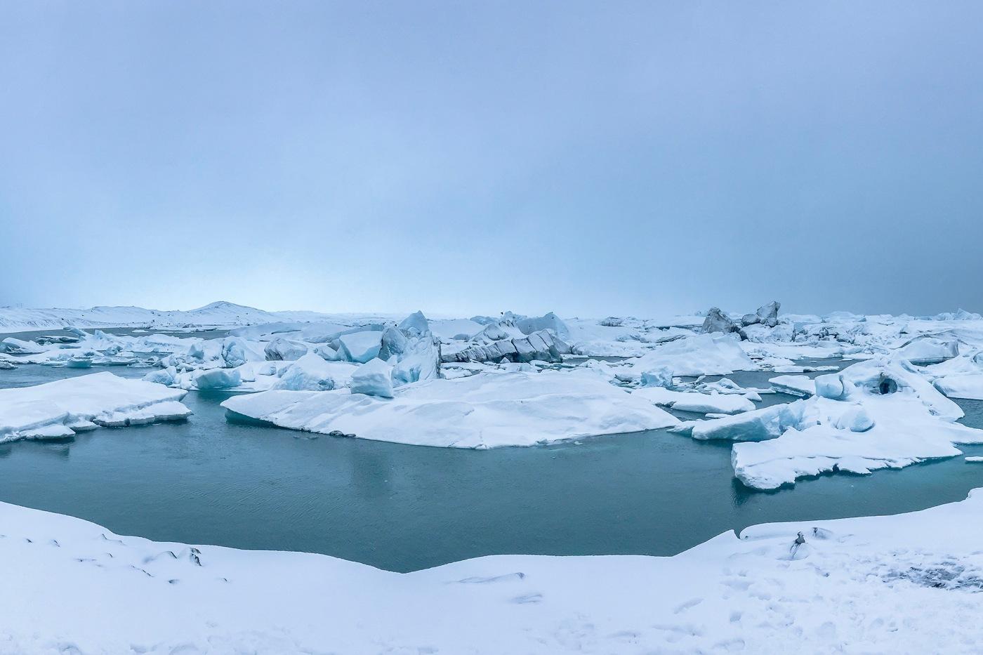 Arctic, Polar, and Tundra Habitat and animals