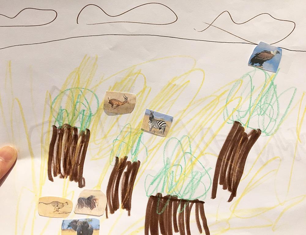 Habitats: Grassland - Savanna - Learning idea scenery and animals drawing