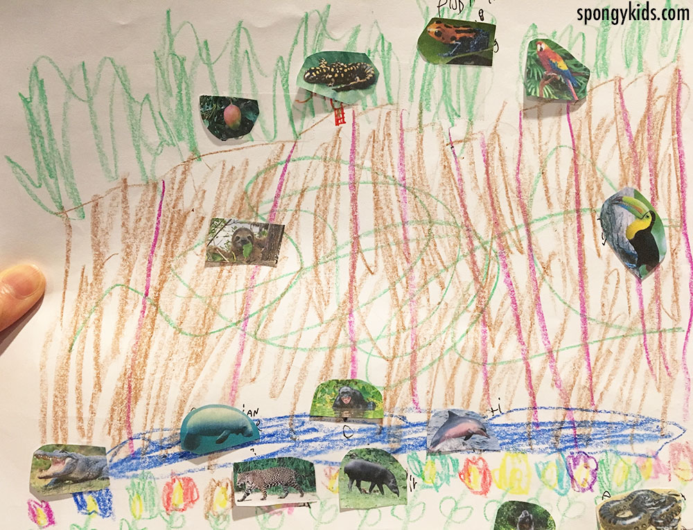 Rainforest (Tropical) scenery and animals drawing