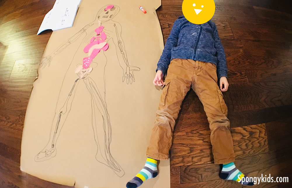 My Body Tracing - Fun Science Learning Activities for Kids