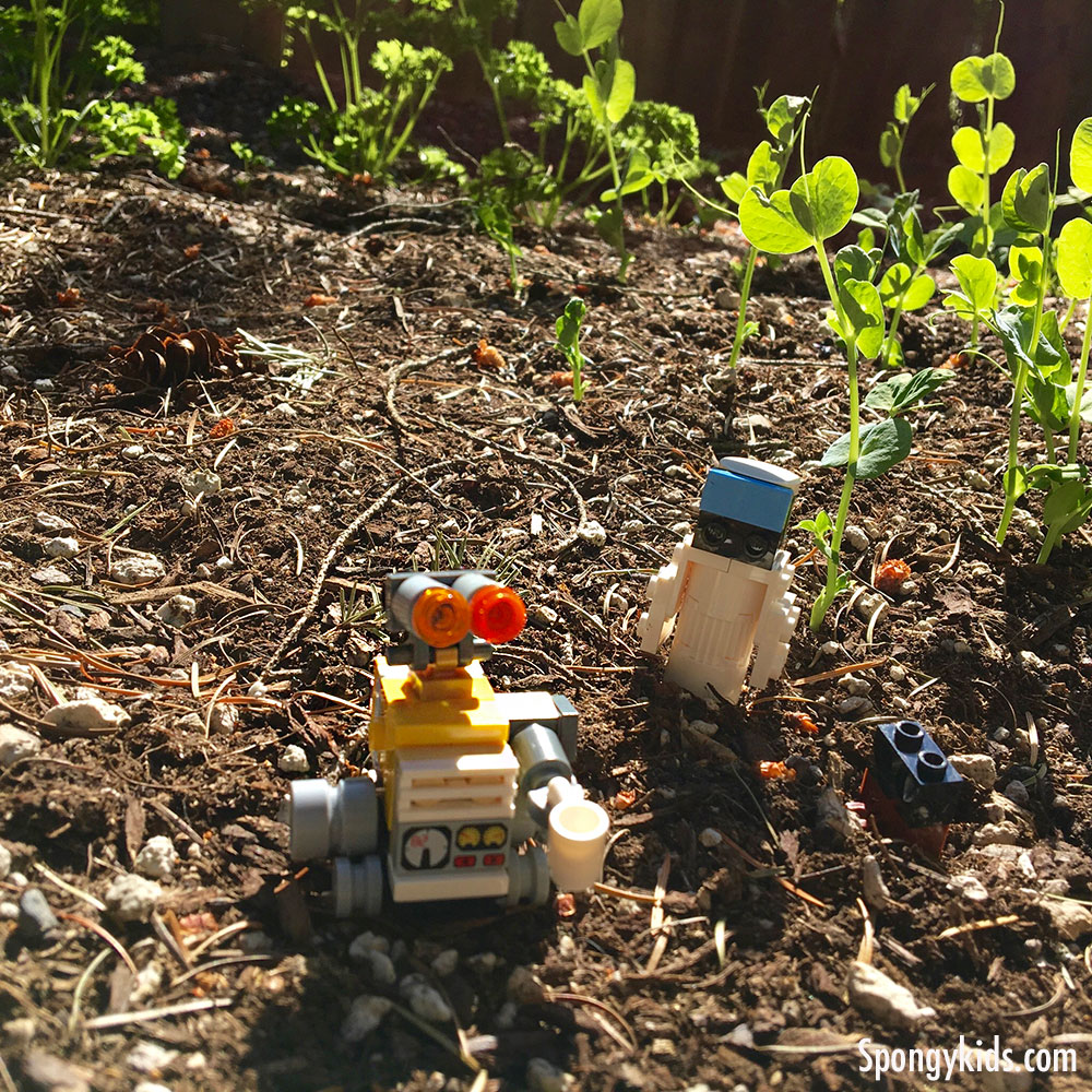 Wall-E and Eve Photo Shoot - At-Home Activity with Lego