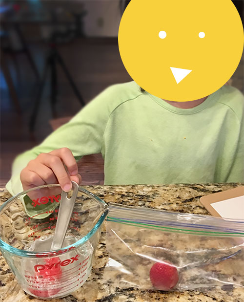 Mixing water, dish soap and salt for Strawberry DNA Extraction Activity